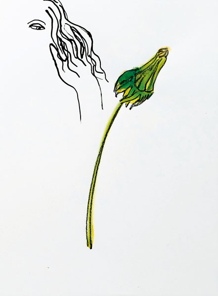 pic-07